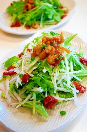 カリカリ&シャキッ!鶏皮と水菜と大根のサラダ:楽天レシピのすすめ